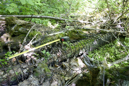 The remains of a wire-wrapped wooden water pipe. Horizon Heritage Consulting photo courtesy of the Arrowhead Conservation Society