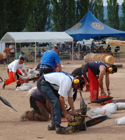 Competitors test their chainsaws during Timber Days. David F. Rooney photo