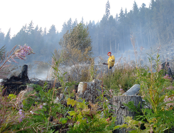Nakimu firefighter Scott Devlin raises his head to watch a passing aircraft as he hoses down a hot spot at French Creek. Photo courtesy of Ben Parsons