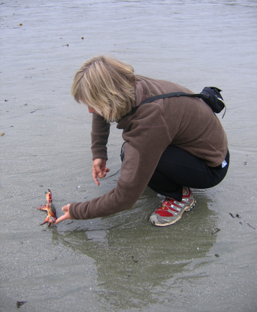 Tina Lindegaard meets a new friend on the beach at Half Moon Bay. Photo courtesy of Cherie Vanoverbeke