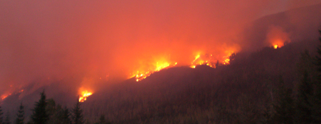 Flames lick the night sky in this recent photo of the Galena Bay fire. Photo courtesy of the Ministry of Forests and Range