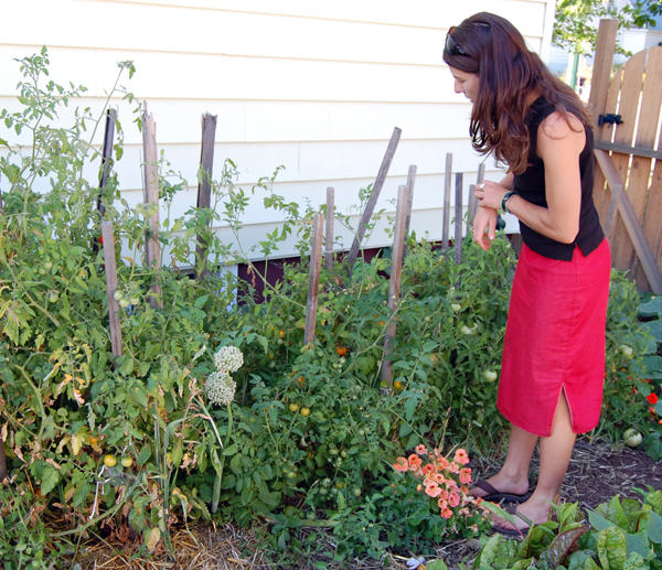 Alice Weber considers the tasty tomatoes growing in her urban farm. David F. Rooney photo