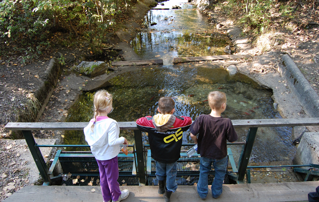 Hey! I see red fish! Three kids scan the waters of Bridge Creek for the darting little red fish that swim upstream to spawn each fall. David F. Rooney photo