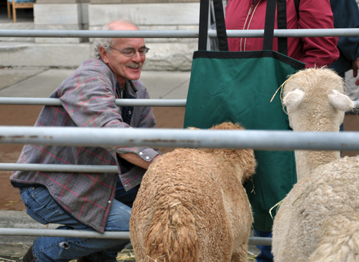 A stall containing a pair of llamas attracted admirers of all ages. Photo courtesy of Sonia Cinelli