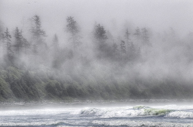 """Photographer Kip Wiley had this to say about this particular image: """"One item at the top of my shot list was 'transition light.' This occurs fairly quickly when the warmth of the sun begins to dissipate the fog. I selected this image for the show because for me there's something about the mood of the light that says 'West Coast.'  Image courtesy of Kip Wiley"""