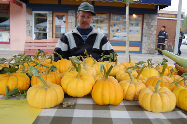 With Halloween coming everyone;s in need of a pumpkin. Ian Richardson of Rocky Ridge Farm had perfect, albeit tiny, ones at the Farmer's Market. David F. Rooney photo