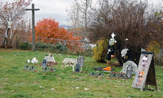 ... a graveyard with its own little crowd of the undead. Brrrr! Does that chill your blood? David F. Rooney photo