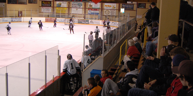Nelson fans watch the action down the rink at the Grizzlies net. Nelson dominated the first period 3-1 and part of the second before the Bantam Junior Grizzlies roared back. David F. Rooney photo
