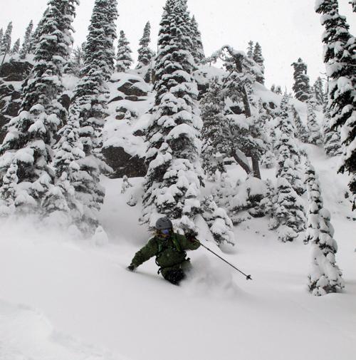 Dan Treadway negotiates the trees but... Photo courtesy of Karilyn Kempton/Revelstoke Mountain Resort