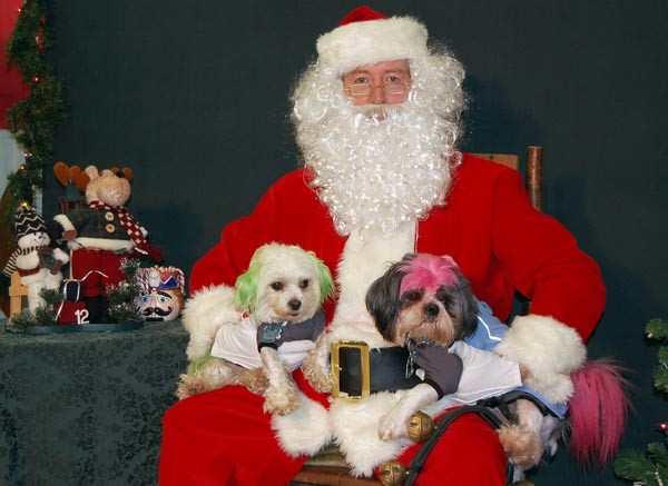 Santa met all kinds of pets on Saturday. There were punk puppies...