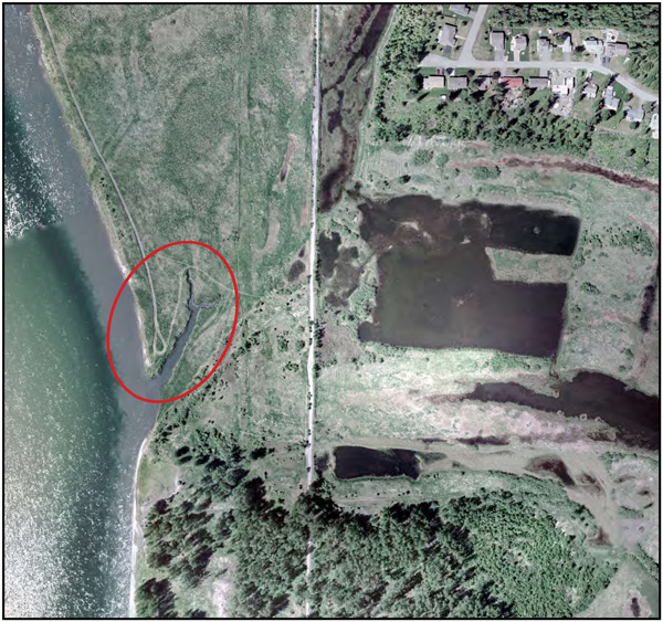 This image shows the Airport Slough and the erosion channel (circled in red). Image courtesy of BC Hydro