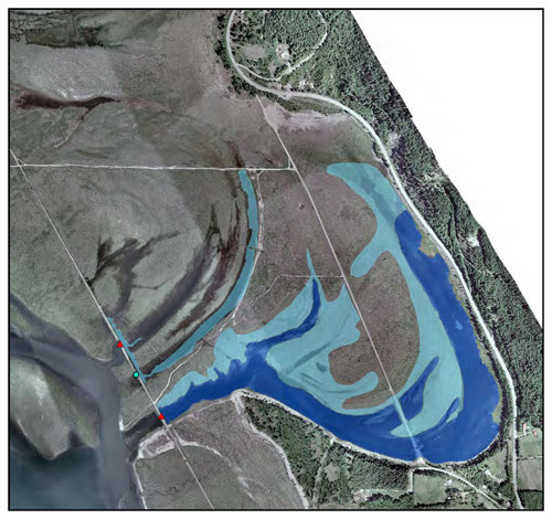 This map of the Cartier Bay wetland shows the location of the planned two new dykes (in red). The existing wetland area is in dark blue and the new wetland habitat that will be created is light blue. Map courtesy of BC Hydro