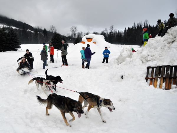 One of Eric Marsden's dog sleds swings past a a crowd of spectators during a dog sledding Spirit Fest event on Tuesday afternoon. The event drew a lively and enthusiastic crowd of adults and kids to an empty field next to Kelley's Bobcats on Nichol Road. David F. Rooney photo