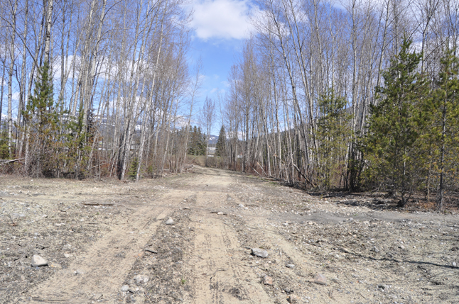 This wasteland looks more like the beginning of a freeway construction project than the a trail through the Greenbelt. David F. Rooney photo