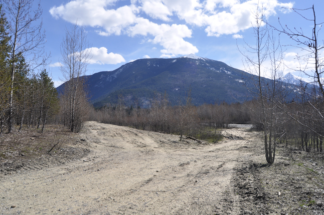 """In fact this is """"an access road"""" used by BC Hydro contractors to reach the river bank for a dredging project in March. David F. Rooney photo"""