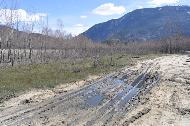 The deep ruts they left behind make it difficult if you're on a bike or pushing a stroller. David F. Rooney photo