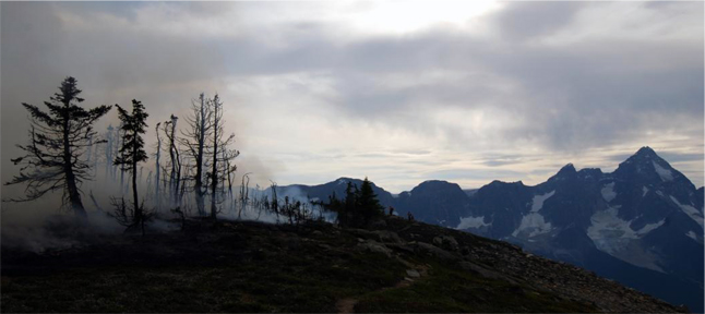 When the fire is over there are still needles on the trees but the dead, dry fuel is gone. In the distance, verga clouds are spotted over Mount Sir Donald – verga clouds indicate rain evaporating before it hits the ground. Simon Hunt/Parks Canada photo