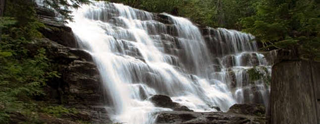 A 4,000 kilowatt-capacity independent hydroelectric project is being proposed for Moses Creek, which is best known for its lovely 14-metre waterfall 10 kilometres north of town off of Westside Road.