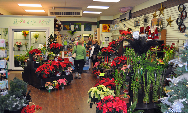 If you wanted to refresh your senses with the colour and smell of Christmas you had only to walk into the Revelstoke Florist shop. David F. Rooney photo