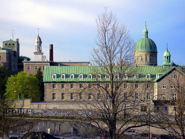This true verdigris roof is on Montreal's Hotel Dieu. This image was taken in 2006 by  Vladimir Sedach was copied from Wikipaedia. As you can see the colour of the real copper verdi gris is more intense than the colour used on the Court House's rubber roof.