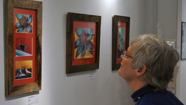 Marcia Woods admires a set of prints by painter Tina Lindegaard. David F. Rooney photo