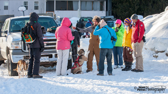 Owner/Operator of Revelstoke Dogsled Adventures, Eric Marsden, explains the route his dogs will be taking the participants on, as one of his faithful business partners vies for his affection. Jason Portras photo