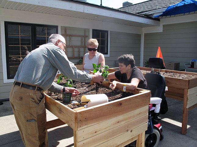 Ken Talbot is advised by Janine Evans (right) how to transplant tomatoes as Donna Kaiser looks on. Laura  Stovel photo