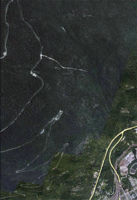 This Google Earth image shows a landslide (centre right from the road up Mount Revelstoke) that is reaching down towards Bridge Creek. Google Earth image courtesy of Alan Polster