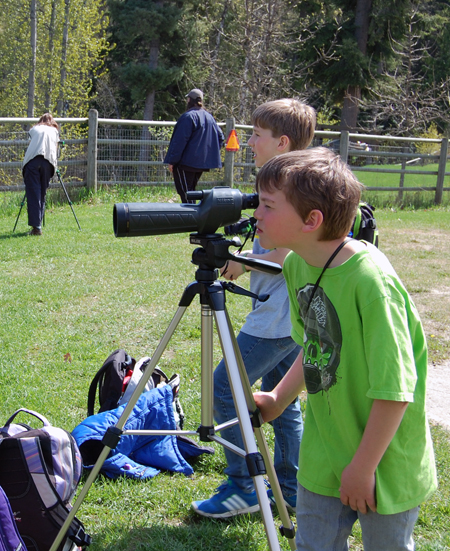 A spotting scope helps when you want a close-up view of a mallard or merganser or maybe one of the many turtles that haunt the pond. David F. Rooney photo