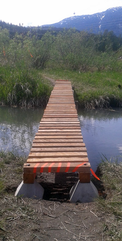 The bridge is about 150 metres downstream of the drainage canal. It joins the last section of Greenbelt land to  crown land at the mouth of the Illecillewaet River. Christian Foster photo