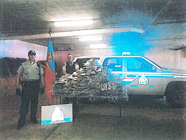 What at first appeared to be a routine stop for speeding quickly became something else when an eastbound pickup truck was found to be loaded with 110 pounds of marijuana worth about $200,000. The driver, a 38-year-old Albertan, has been charged with possession for the purposes of trafficking — and speeding. He'll appear in Provincial Court in Revelstoke in November. Photo courtesy of the Revelstoke RCMP