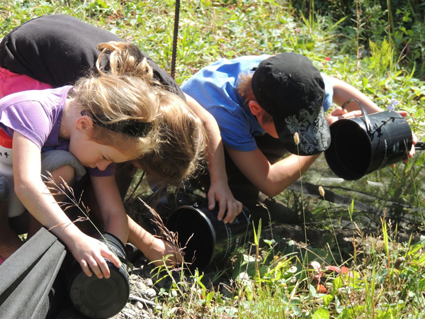 School summer holidays may be winding down, but there is at least one more family-oriented activity to mark on your calendar before they are completely over: Toadfest 2014! Kids love searching for tiny western toadlets that they can then help across Highway 6. Photo courtesy of the Fish and Wildlife Compensation Program