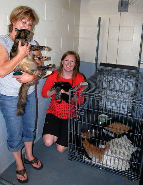 Joy Armstrong (left) and Shannon Van Goor of the RDHS have kittens galore to share with the community. They're inviting all interested members of the public to come to their Open House at the animal shelter on Saturday, September 13 from 10 am until 2 pm. The shelter is located inside the Public Works Yard across from the Forum on Victoria Road East. David F. Rooney photo