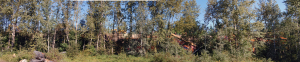 This panoramic image gives you a clear idea of the size of the derailment. David F. Rooney photo