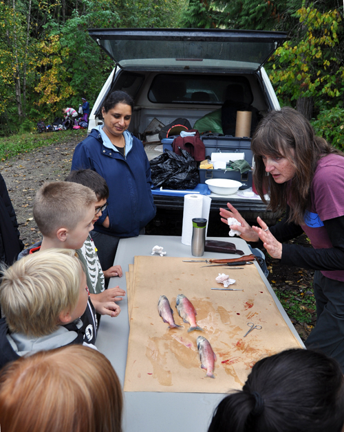 The more than 100 kids from Arrow Heights, Columbia Park and Begbie View Elementary Schools were fascinated by Karen Bray's description of Kokanee biology and her dissection of her sample fish. David F. Rooney photo