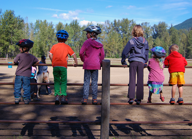No surprise here: excited kids watch one of their friends ride a pony. David F. Rooney photo