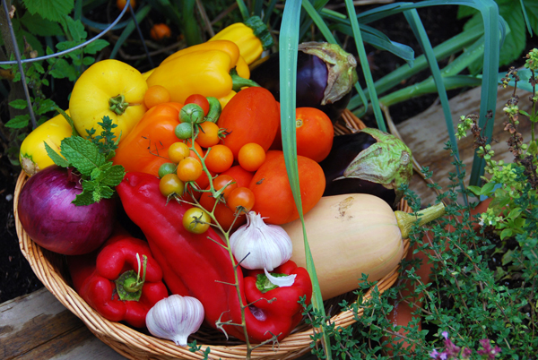 Harvest veggies are inspirational anywhere in the world from Morocco to Revelstoke. Leslie Savage photo