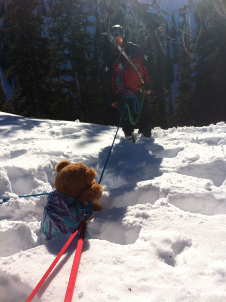 Uh oh! Dewey gets rescued by the Ski Patrol.  Photo courtesy of Eleanor Wilson