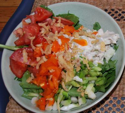 Lettuce, asparagus, tomatoes, green onions and those crispy fried onion bits plus the chicken salad make this a complete meal.