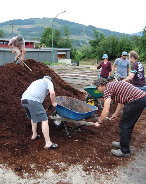 Mike Cummings shovelled like crazy to fill the wheelbarrows that shuttled back and forth between his big pile of mulch and the garden beds. David F. Rooney photo