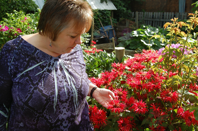 Lisa Feuz pauses by her bee balm which is — No surprise there! — extremely popular with the local bee population. David F. Rooney photo