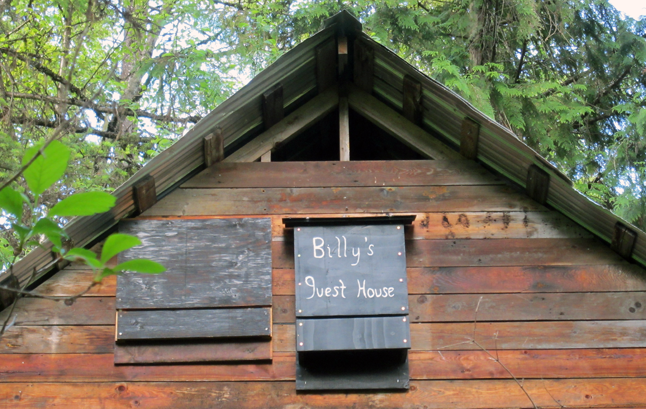 Summer is the season when property owners notice bats in their buildings. They may find guano on the deck, hear bats in the walls, or smell a build-up of guano.  Bat-houses provide an alternative roosting habitat for bats. Photo courtesy of the Kootenay Community Bat Project