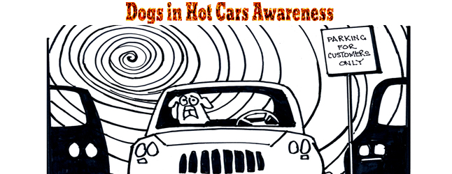 online-front-dogs-in-hot-cars
