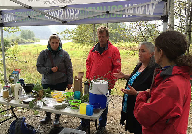 Sue Davies talks about how many invasive species, such as burdock, dandelions, lamb's quarters, Himalayan blackberry, mullein and chicory can be processed into food. David F. Rooney photo