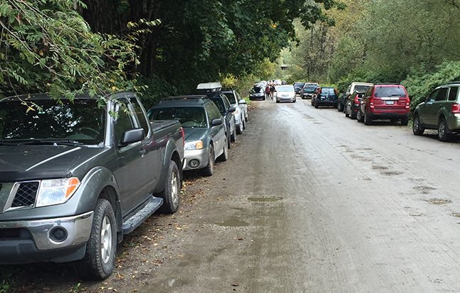The parking situation was tight almost everywhere along Track Street East as hundreds of people decided to attend the the Third Annual Revelstoke Garlic Festival put on by Sarah Harper and Stuart Smith at their home. David F. Rooney photo